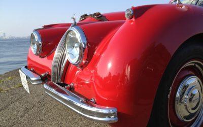 Monaco: Prince Rainer's Car Collection