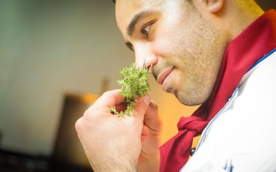 Indian Cookery Classes in the English Countryside
