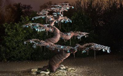 The Love Lock Tree of Beaulieu