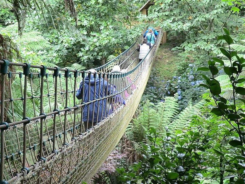 Lost Gardens of Heligan, Cornwall, UK
