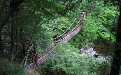The Vine Bridges of the Iya Valley, Japan