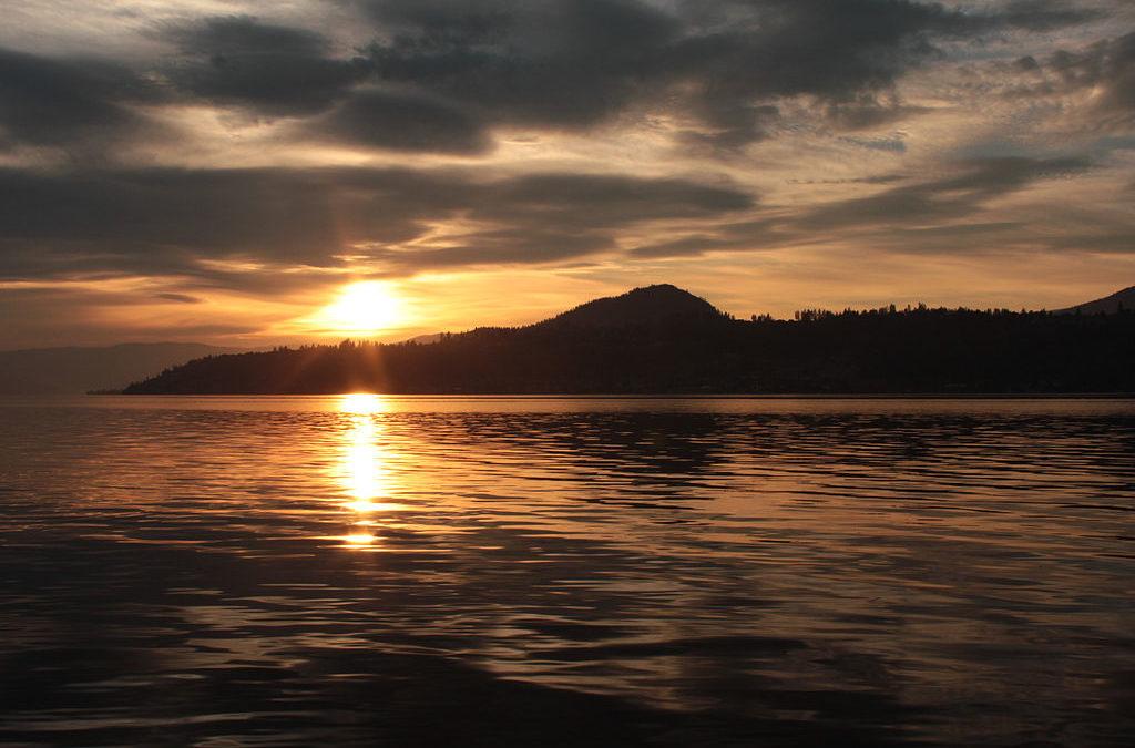 Ogopogo the monster of okanagan lake traquo for Koi pond kelowna