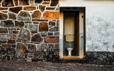Will America Now Change Its Toilet Habits?