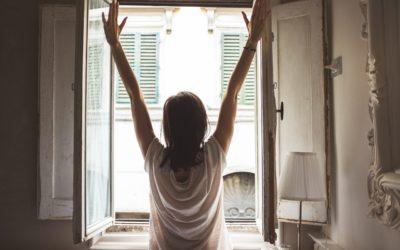 Window Swap: See The World